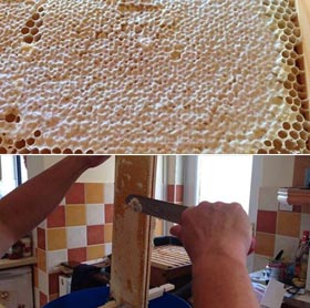 Extracting Honey