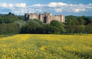 Raglan Castle 12th century